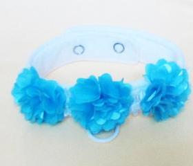 Dog Wedding Flower Collar in Pink Plum or Turquoise Dog Collars Dog Clothes