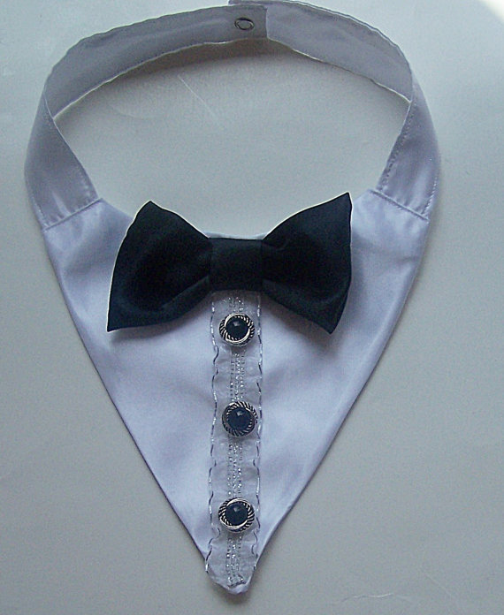 tuxedo dog wedding collar dog collar pet clothes and accessories on